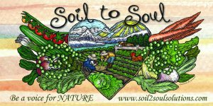 soil_to_soul_logo_with_website_-_3600x1800_copy